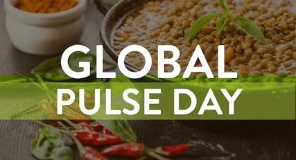 global-pulse-day-header
